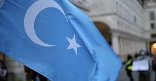 """BM'DE 39 ÜLKEDEN ÇİN'E """"DOĞU TÜRKİSTAN"""" ÇAĞRISI"""