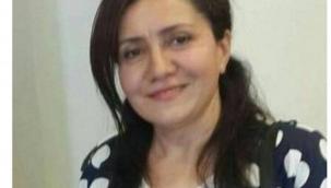 Türkiye'de Azerbaycan'ın Türkçe yayınlanan profesyonel medya kuruluşlarına çok ihtiyaç var' - Sevil Ünal
