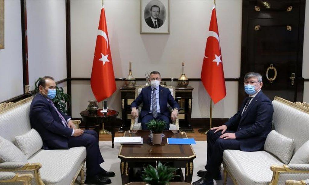 2020-2025 Türk Konseyi Stratejisi ve Türk Dünyası 2040 Vizyonu - Yazar: Suinbay Suyundik