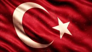 Türkçe Elden Gidiyor