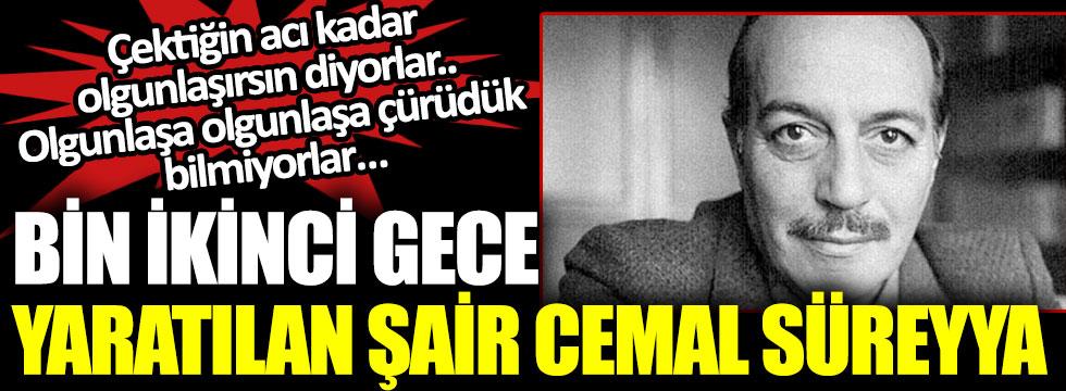 Cemal Süreyya ölümünün 31. yıl dönümünde anılıyor