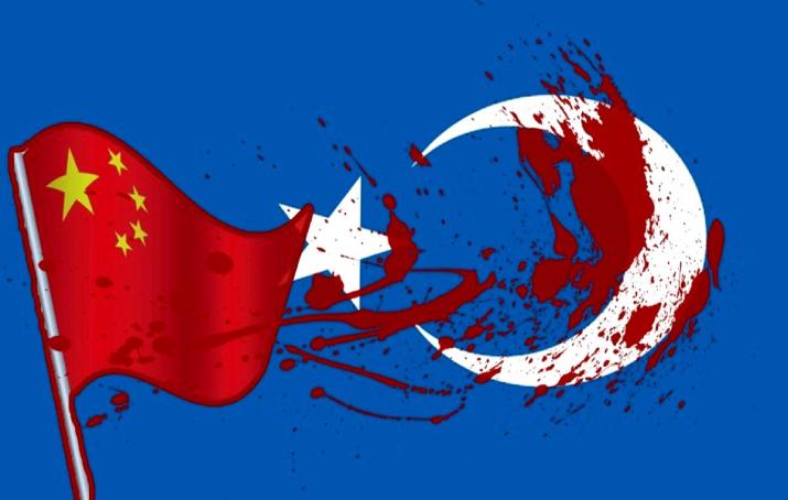 Türkiye'de Doğu Türkistan anketi
