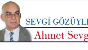 Ahmet SEVGİ: Karınca ile Süleyman