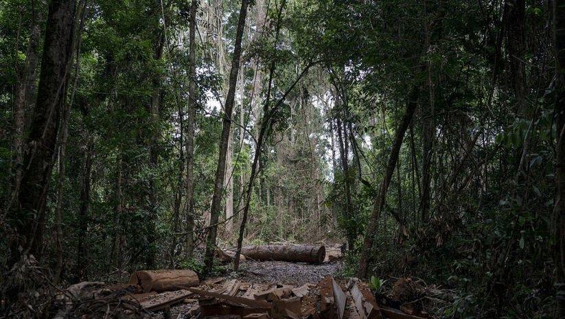 Umut Güner: Yanomami Kabilesi