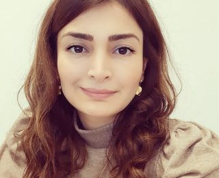 Züriyə Garayeva: Ermənistanda parlament seçkiləri