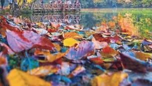 En güzel sonbahar söz ve şiirleri