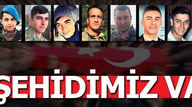Afrin'den acı haber! 8 şehidimiz var