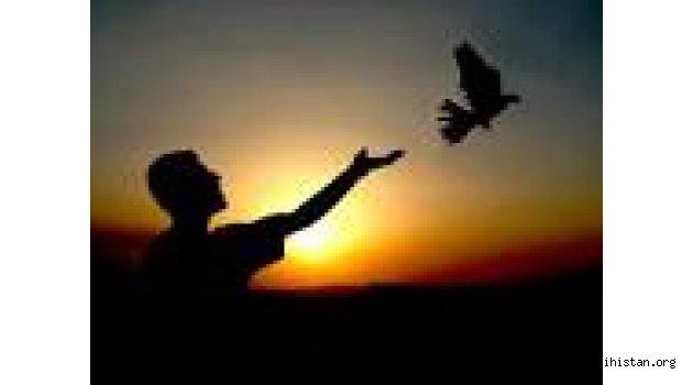 Arzuhan Tuğçe YILDIZ : ÖZGÜRLÜK