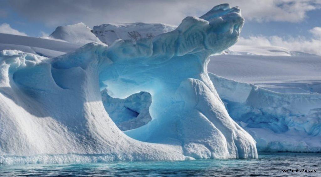 Dünya'nın En Soğuk Bölgesi Antarktika'da 90 Milyon Yıl Önce Tropikal Ormanların Olduğu Anlaşıldı!