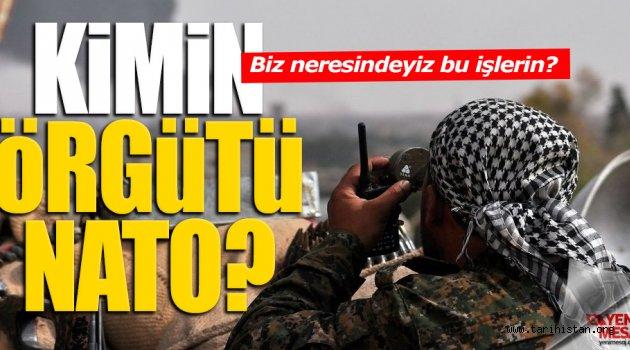 NATO Kimin Örgütü?