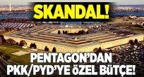 ABD'nin PKK'PYD'ye özel bütçe