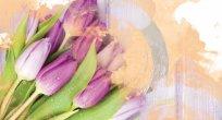 Enis U. Tunç: Lale aşkı