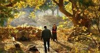 Türkiye'nin Oscar adayı Ahlat Ağacı