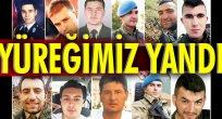 Zeytin Dalı Harekatı'nda 12 şehit