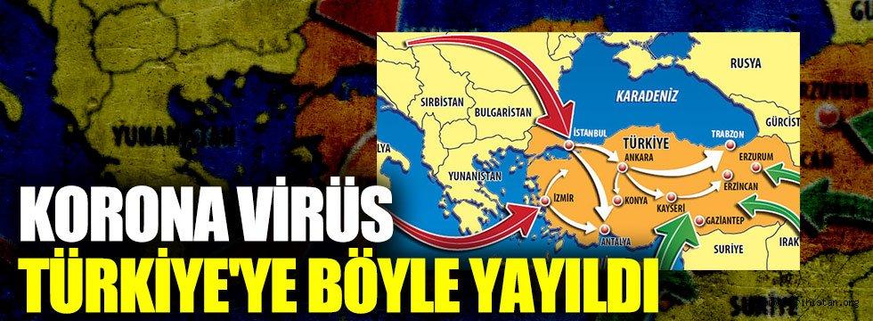 Virüsün Türkiye'ye yayılma güzergahı